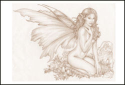 Fairy Sepia Special Edition